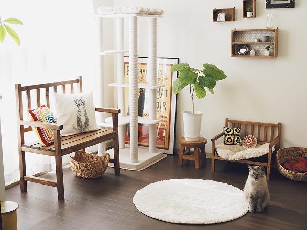 賃貸で猫を飼うならクッションフロアは必須!