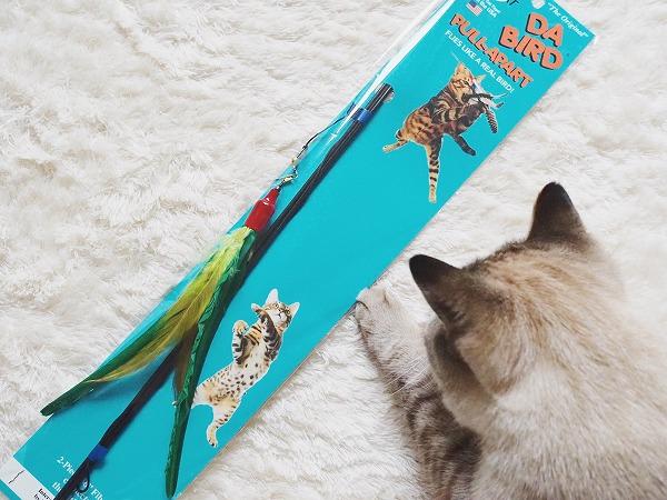 アメリカでベストセラーの猫じゃらし「ダ・バード」