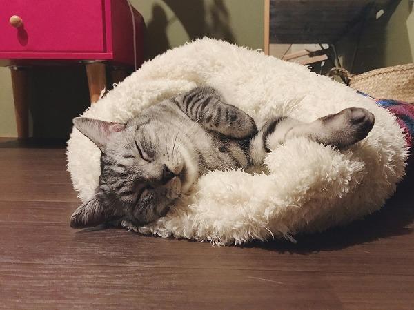 寝袋の正しい使い方