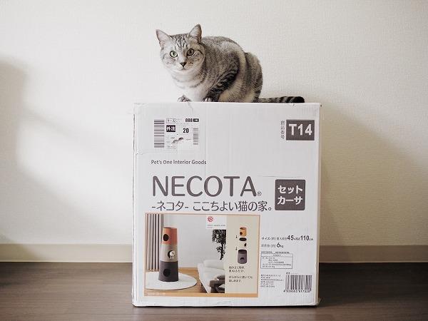 おしゃれなミニキャットタワー「NECOTA セットカーサ」