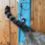 超おすすめの猫用おもちゃ「ダ・ボール」