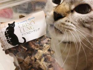 カントリーロードの猫おやつ「クリスピーラング」