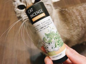 マタタビのお香が入った箱のにおいを嗅いでいるシャムトラ猫
