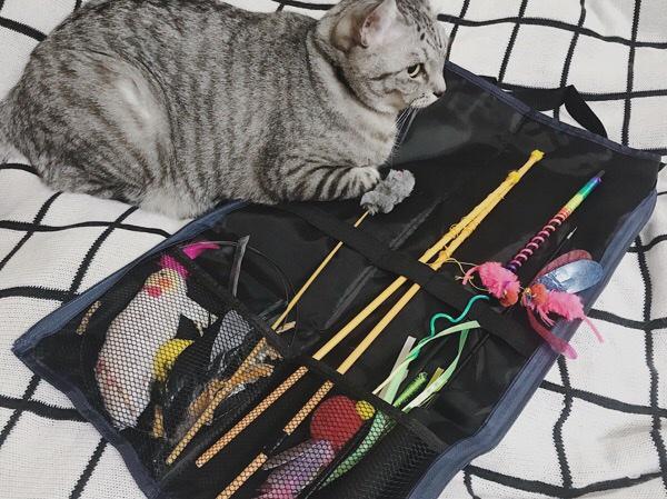 猫おもちゃ収納バッグにおもちゃを入れてみたところ。