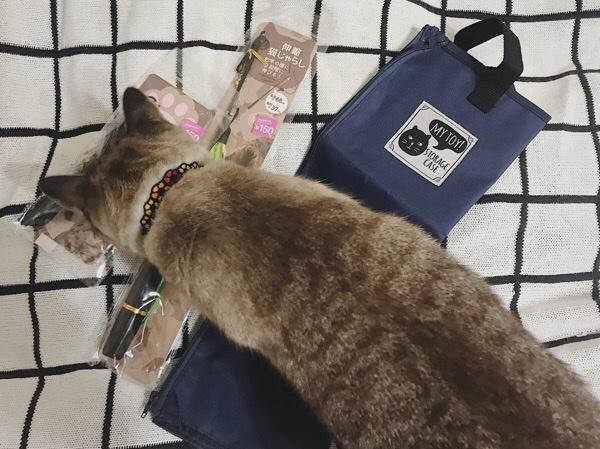 猫じゃらしと猫おもちゃ収納バッグ。