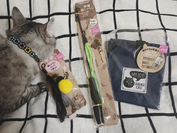 3coinsで購入した猫用グッズ。
