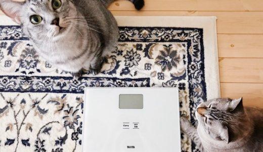 50g単位で猫の体重が計れる体重計を買ってみた