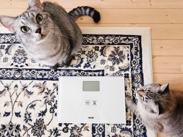 新しい体重計。