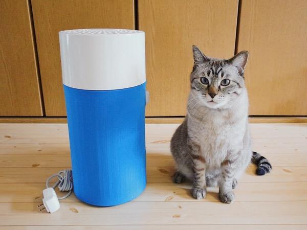 ブルーエアの空気清浄機「Blue Pure 411」と猫の大きさ比較。