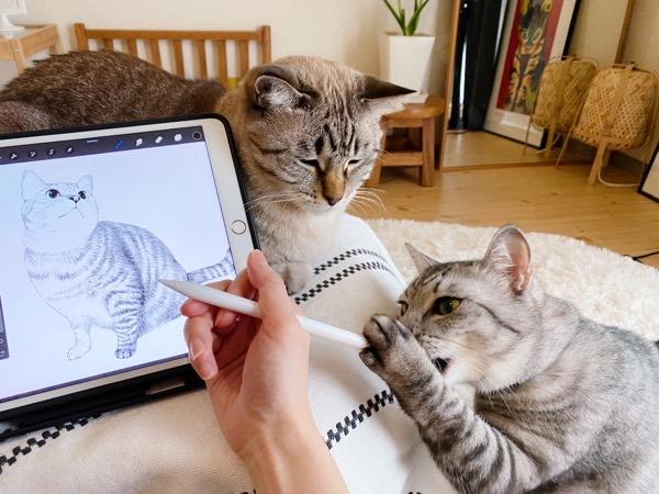 お絵描きの邪魔をする猫。