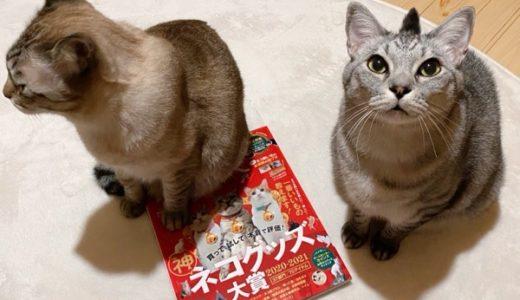 猫雑誌の表紙デビュー!?&おすすめ猫マンガ